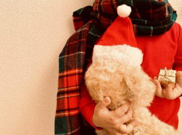 「しまむら」でクリスマスプレゼントを買うなら何がおすすめ?2020の人気商品は?