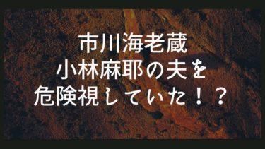 【市川海老蔵】小林麻耶の夫を危険視していたって本当?トラブルも予想していた?