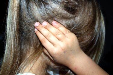 嘉風の妻が子供を虐待!衝撃の内容と証拠画像あり。次女は亡くなっていた⁉︎
