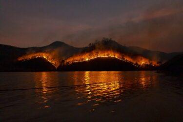 足利の山火事の犯人はハイカー?火の不始末?範囲も広く避難勧告や通行止めも